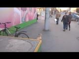 Пес ждет хозяйку на ул. Коммуны (26.04)