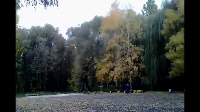 Осень в парке вампиров ищу Вампира