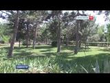 История парка на территории Евпаторийского дельфинария
