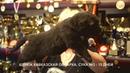 Питомник Кавказских овчарок. Щенки суки 15 дней. www.r- 79262205603 Ягодкина Татьяна