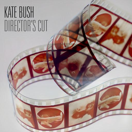 Kate Bush альбом Director's Cut (2018 Remaster)