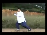 James Fu 85 forms Authentic Yang Style Taijiquan