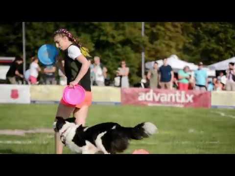 Alicja i Wena Freestyle level 2 | Latające Psy w Wilanowie 2018