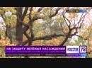 телеканал 78 новость о штрафах за нарушение правил содержания зеленых насаждений