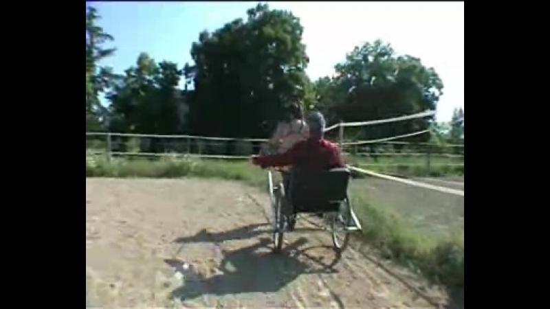 Ponygirl pulling cart 1d