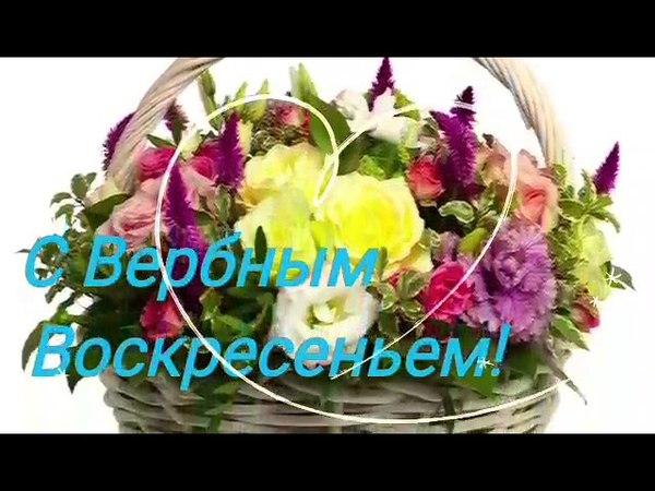 Поздравляю с Вербным Воскресеньем Красивая музыкальная видео открытка Поздравление
