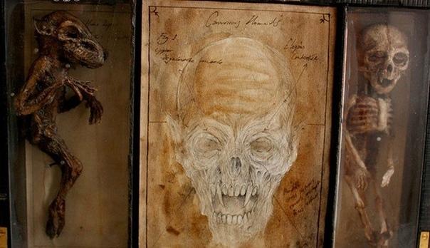 Коллекция таинственных криптидов Томаса Мерлина. В Лондоне в 1960 году, совершенно случайно, при ремонте здания приюта для сирот строители обнаружили вход в подземелье, который был тщательно