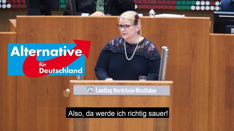 AfD Mir platzt der Kragen - Noch mehr Geld für Queer- und Genderwahn!