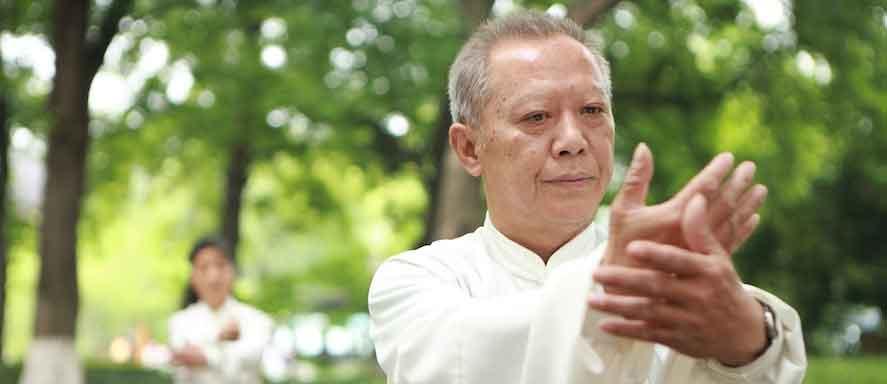 Мастер Тай ЧИ - самообладание и контроль, баланс - физический и эмоциональный. Однако все трое уже достигли очень высокого уровня тайцзи-цюаня раньше.