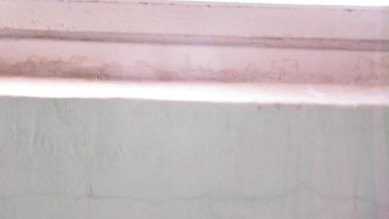 Лифты распашной OTIS 1000R (2007 г.в.), OTIS MCS-300 (2007 г.в.), V=1-071 мс, Q=225-350 кг (1766)