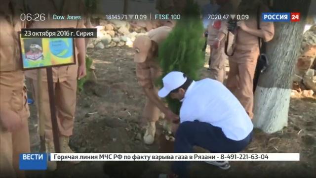 Новости на Россия 24 Олимпийцы посадили именные деревья на авиабазе Хмеймим