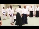 Shinichi Tohei Sensei teaches kiai
