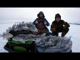 """Рыбалка Зимой """" ФАРВАТЕРНЫЕ БЕРШАТНИКИ """". Рыбалка на Берша, Волга. Обловили местных ."""