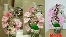 Cara Membuat Bunga Anggrek dari Kantong plastik
