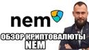 🔵 NEM КРИПТОВАЛЮТА - ОБЗОР МОНЕТЫ XEM