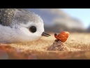 мультфильм Disney - Песочник - PIPER   Короткометражки Студии PIXAR [том3]