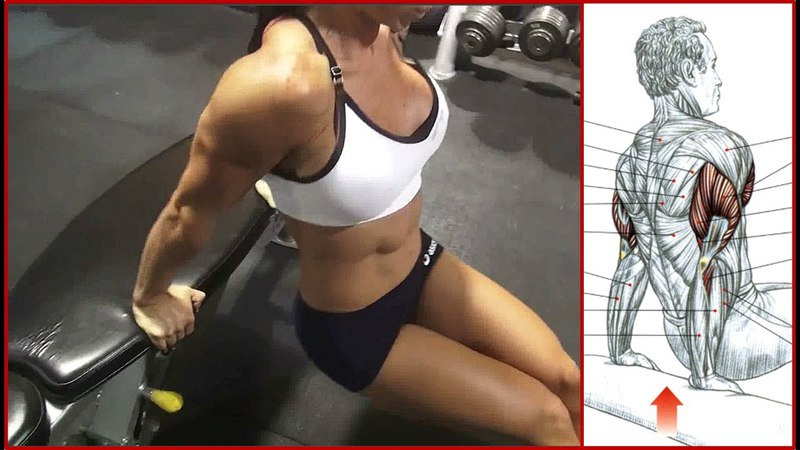 Michelle Lewin- Arm Workout (Fit Style)