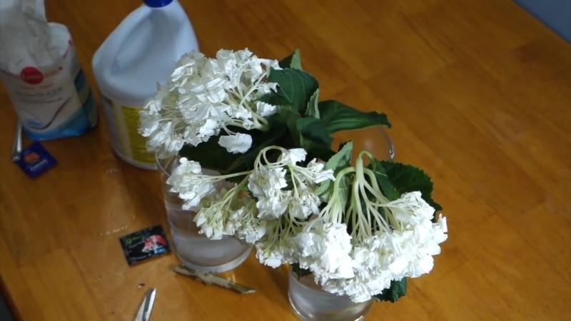 Как оживить мертвые цветы