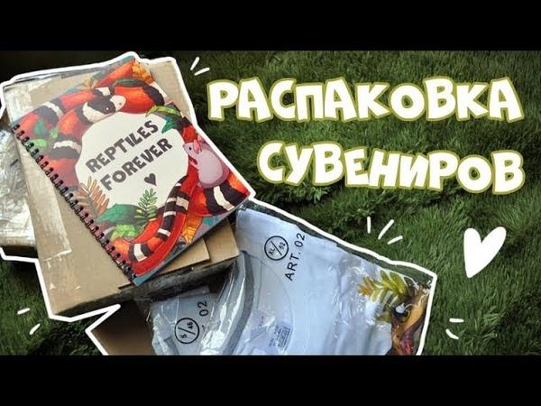 Готовимся к фестивалю 🌿 Распаковка сувениров