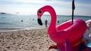 Тайланд Паттайя №12 САМАЕ БИЧ ЛУЧШИЙ ПЛЯЖ НА ОСТРОВЕ КО ЛАН Samae beach