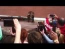 Александровский сад Смена часовых 05 07 2018г