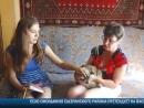 Vesti-detalno-8-08-2018 Карина День кошек
