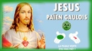 Jésus un païen d'origine Gauloise Divulgation Palestine mégalithique la pilule verte 4