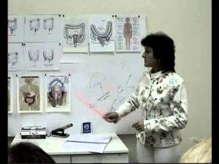 Физиология и строение кишечника