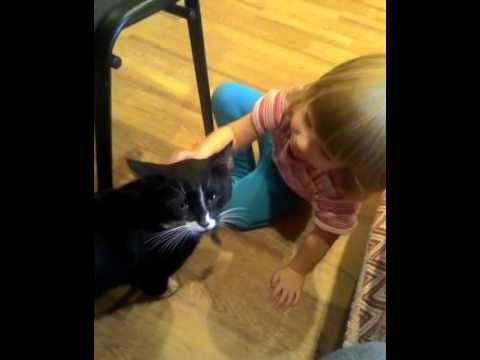 Я плакала, девочка успокаивает кота
