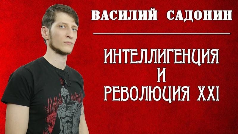 Интеллигенция и революция XXI. Василий Садонин