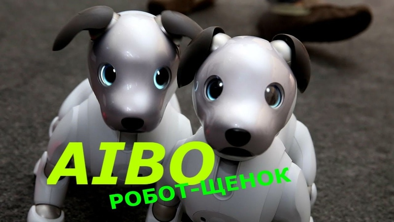 Айбо Aibo робот щенок милая собачка sony интересная игрушка