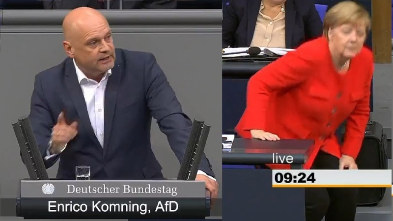 Enrico Komning (AfD) - Merkel will DDR 2.0