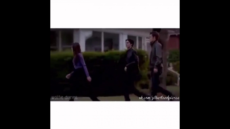 Elena Gilbert | Damon Salvatore | Stefan Salvatore