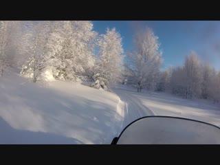 Солнечный зимний лес. Дорога в зимовье. Sunny winter forest. The road to the cabin