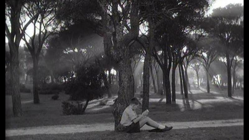 Del rosa al amarillo - Manuel Summers (1963).