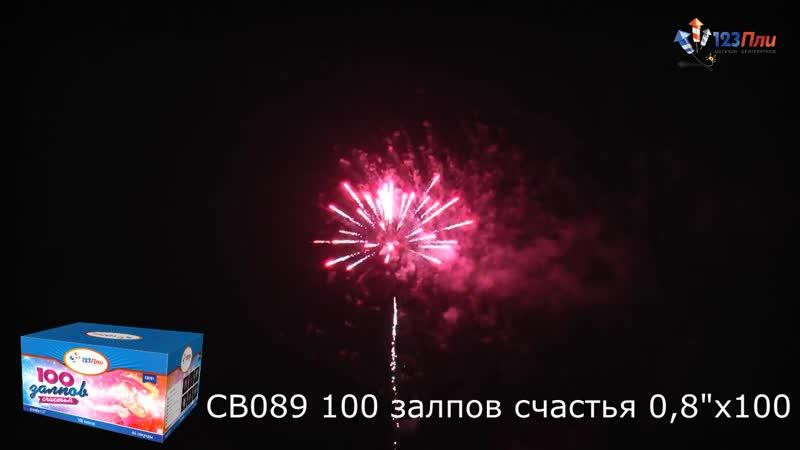 СВ089 Сто залпов счастья (0,8х100)