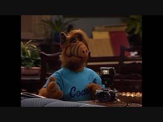 Alf Quote Season 2 Episode 6_Что скажешь