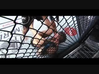 Победа Хабиба на UFC 229