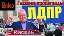 Соловьиный помет №55/Давка за конфеты, Курилы, МС KiSeL