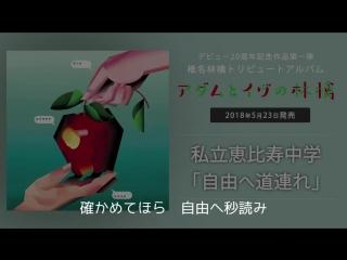 Shiritsu Ebisu Chuugaku - Jiyu e Michizure (Sheena Ringo cover) Radio Rip
