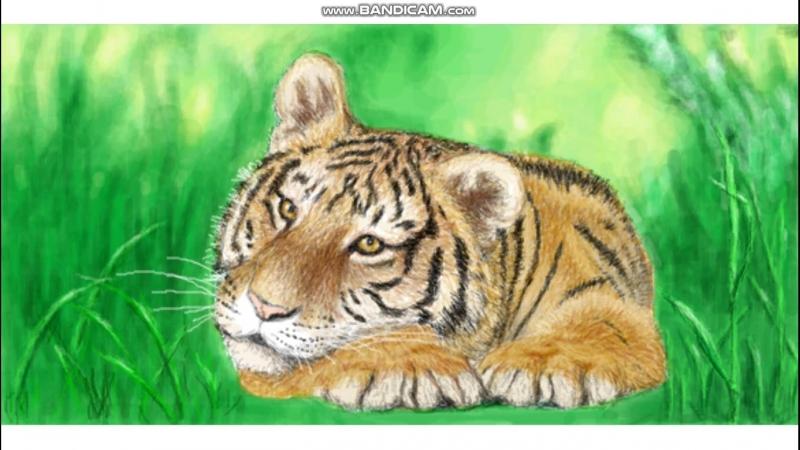 Живое граффити Тигр