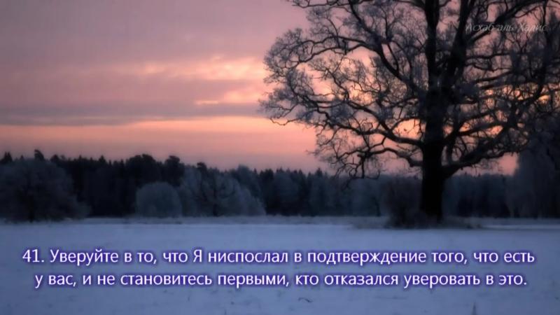 """Красивое чтение Корана. Сура _""""КОРОВА_"""" аят 28-59"""