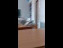 Артём Череп - Live