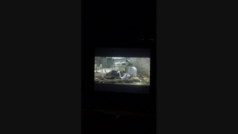 Киноманы