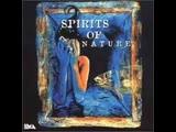 Spirits of nature Enigma,DeepForest,Vangelis etc