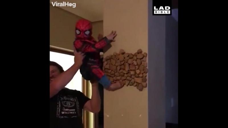 Человек паук снова в городе