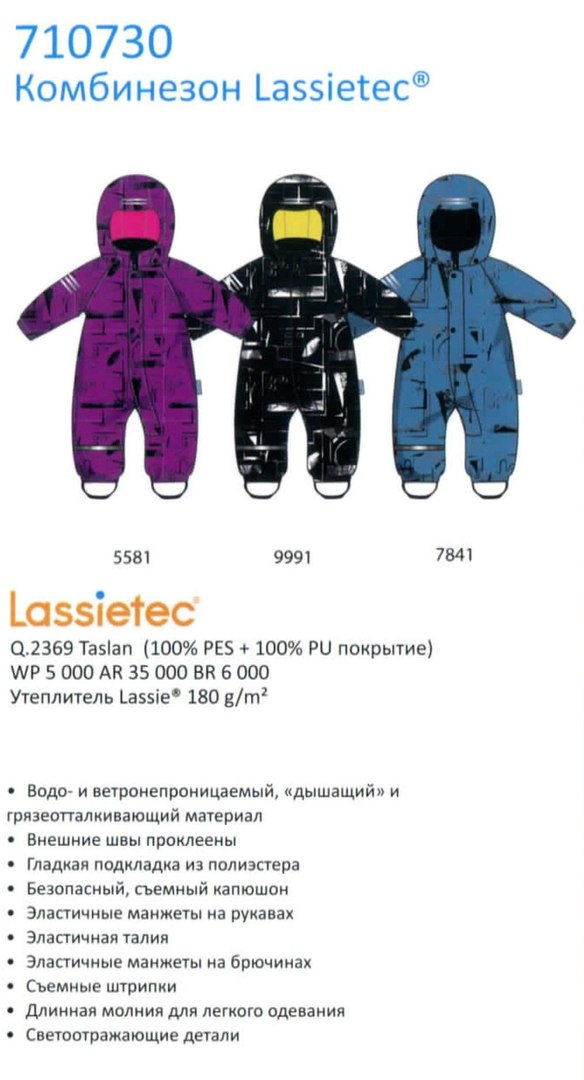 Зимний комбинезон 710730-5581