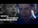 Newt Thomas | hymn for the missing