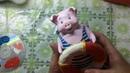 Свин—моряк из папье-маше. Мастер класс. Часть 2