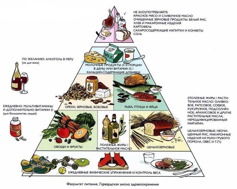 Голодать или не голодать: зачем нужна диета